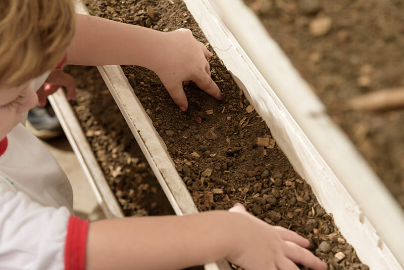 Aula de jardinagem para crianças