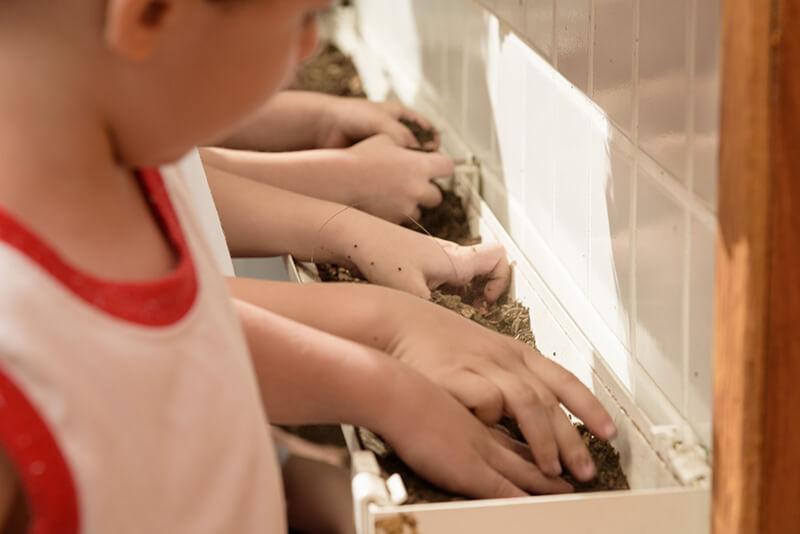 Cuidando da hortinha da creche